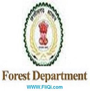 Chhattisgarh Forest Department Recruitment 2018-37 Forest Guard posts